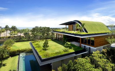 Be Smart! Choose an Eco-friendly House!